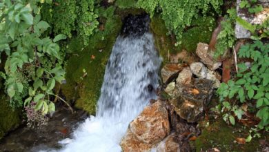 Photo of Rigenerare corpo e mente: le acque termali
