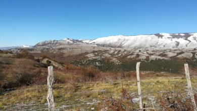Photo of Valle dell'Angelo: un'escursione nel cuore del Parco del Cilento.